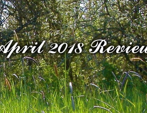 April 2018 Review