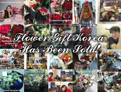 Flower Gift Korea Has Been Sold!